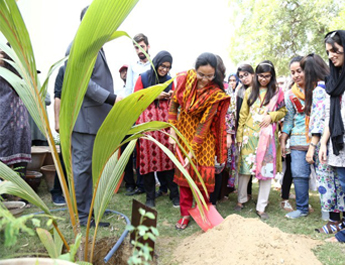 Oct 25, 2017: A Tree Plantation was carried out at IBA Main Campus