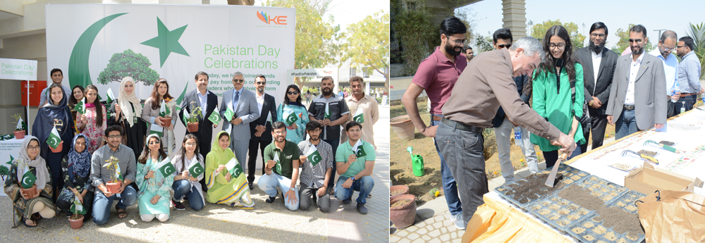 A Tree Plantation Drive at the IBA